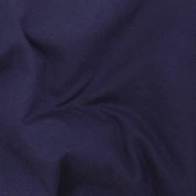 17 - Blueberry