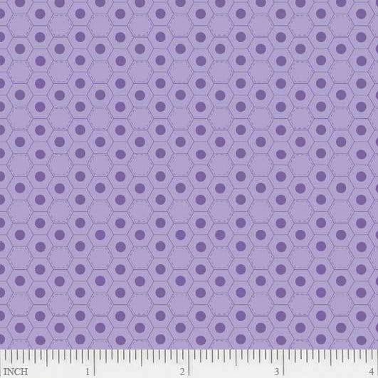 F22422/ Purple