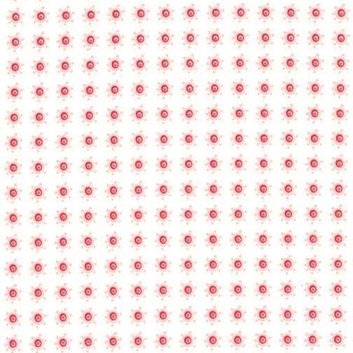 8447/ 13 - Blossom