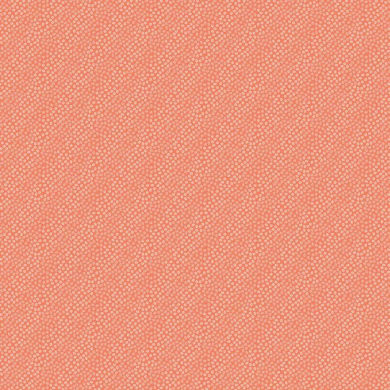 20246/ 56 - Coral