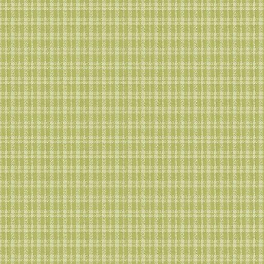 6363/ 41 - Lime