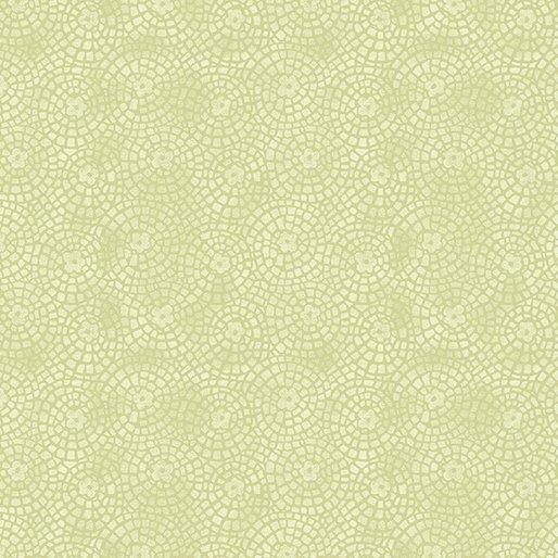 10076/ 04 - Lime