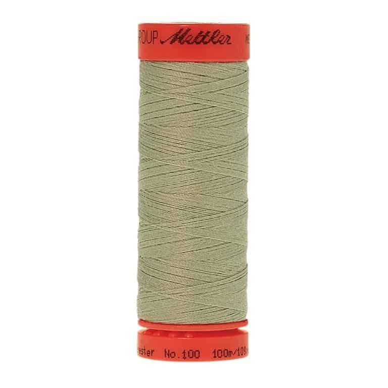 1095 - Spanish Moss