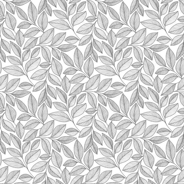 23913/ 99 - White/Black