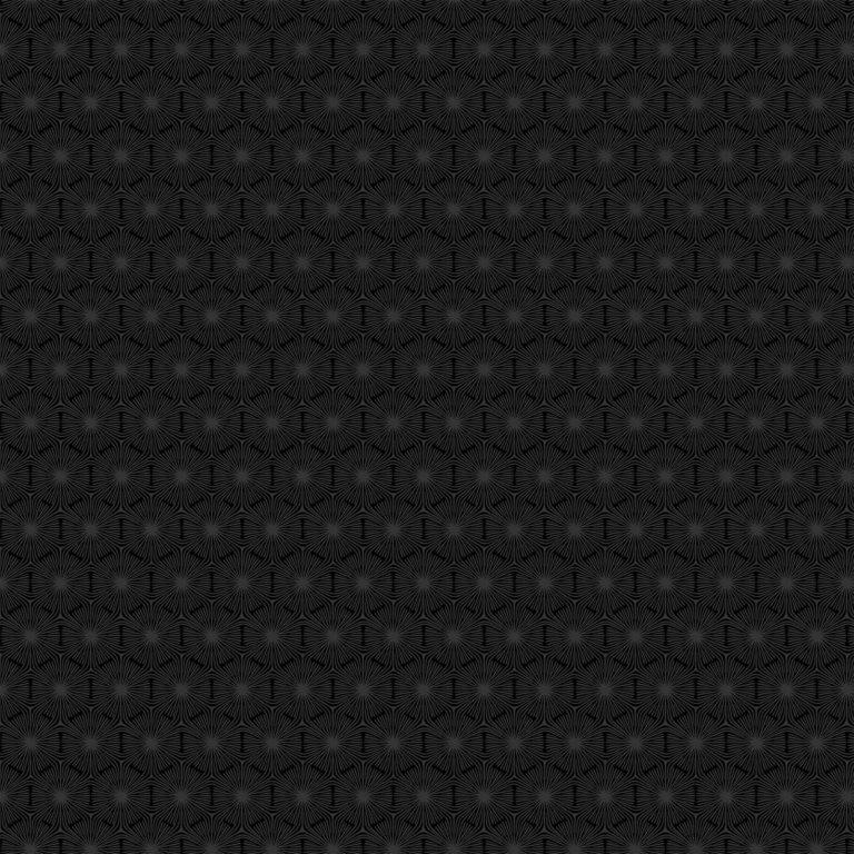 23916/ 98 - Grey/Black